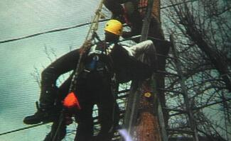 Osha electrical safety, electricity safety